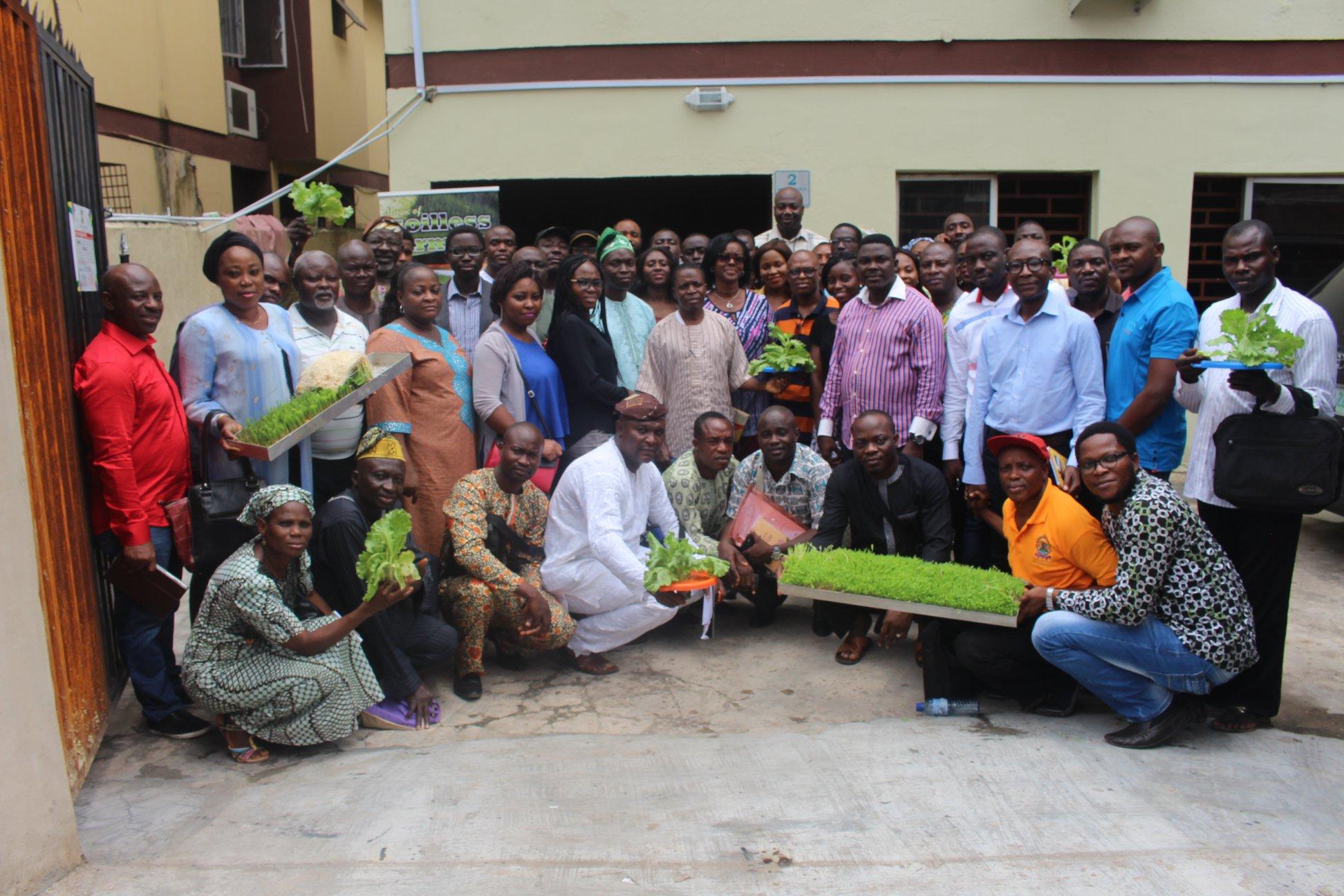 Nigeria's Small Farmers Embrace Hydroponics
