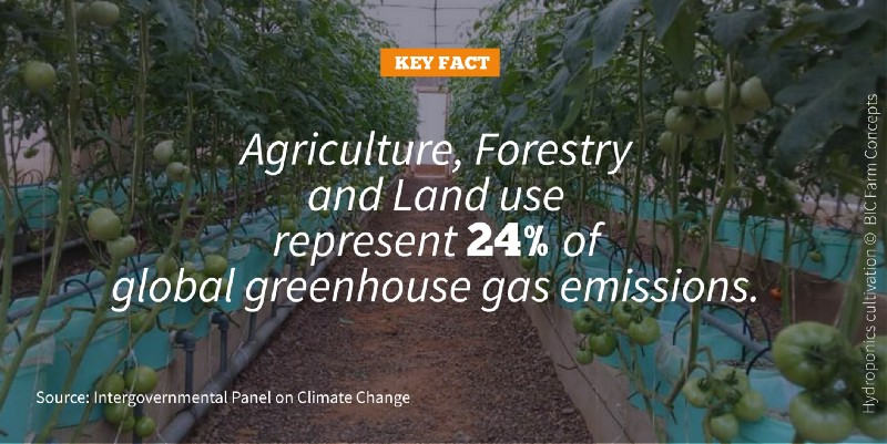 Keyfact Agriculture